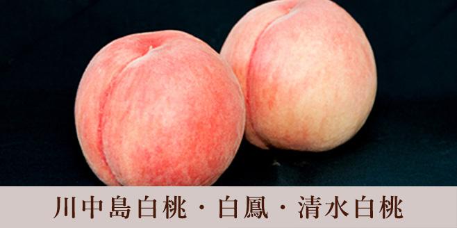 八旗農園 桃