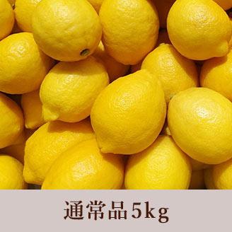 田坂農園 レモン 5kg