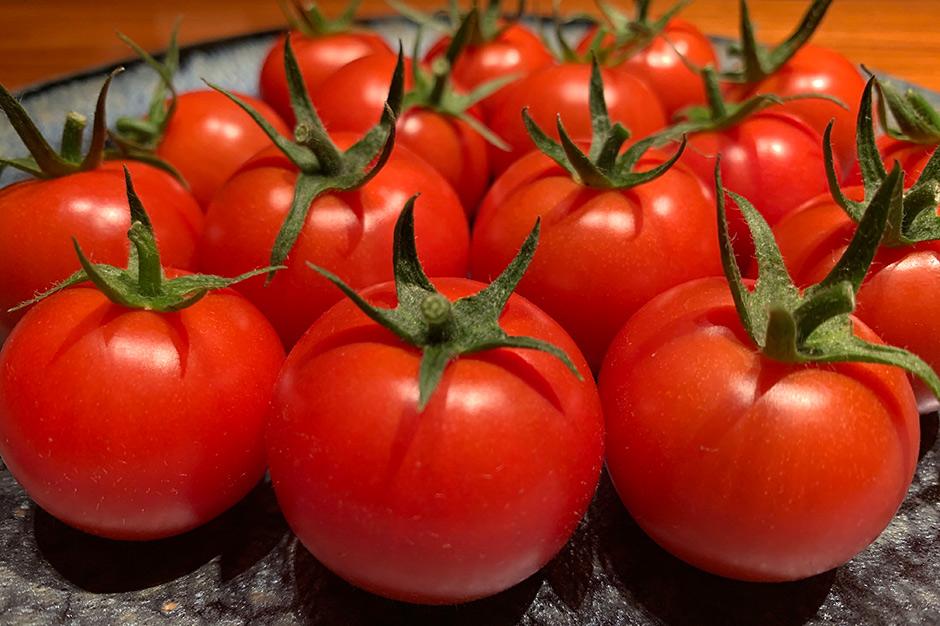 プレミアムフルティカトマトのアップ ヘタがピンと伸びている