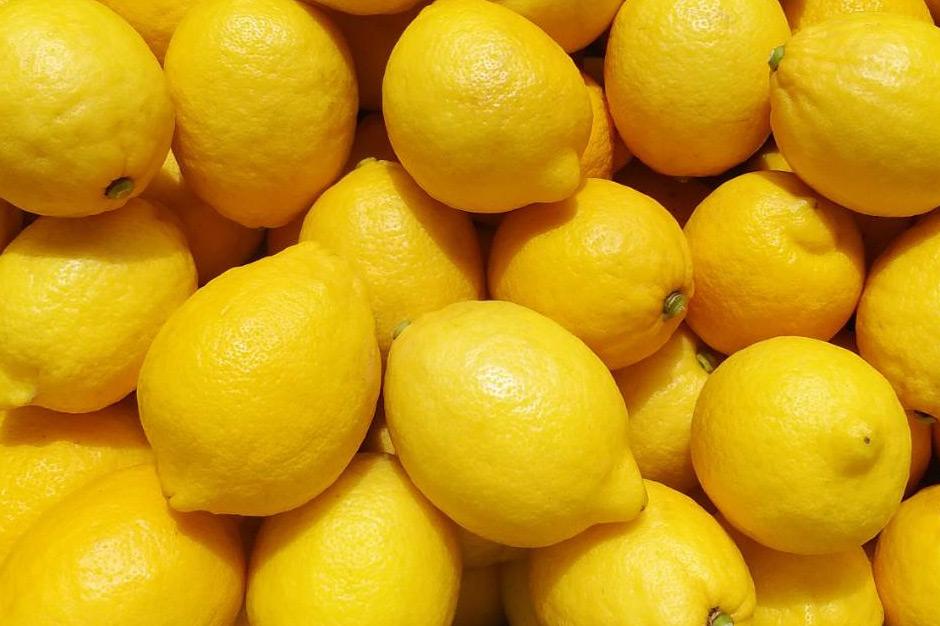 田坂農園のレモン