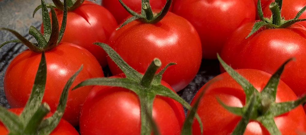プレミアムフルティカトマト